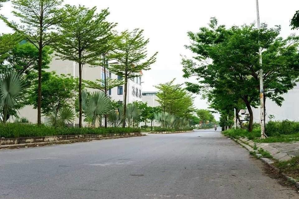 Đường đôi 2 chiều thảm bê tông nhựa ở khu đô thị