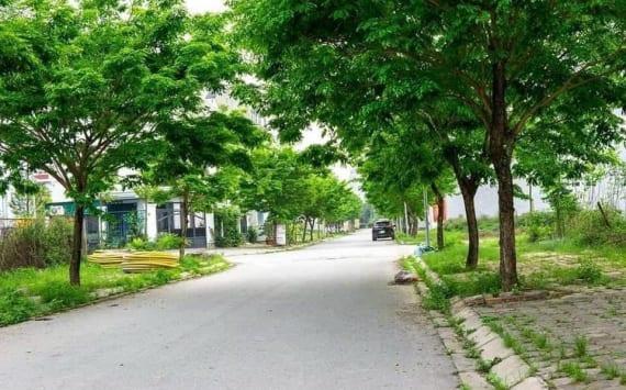 Đường 14m cây xanh trồng 2 bên khu đô thị Thanh Hà